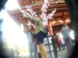 正直チラ散歩さんの 花の東京Pチラ見物 浅草編 Vol.05